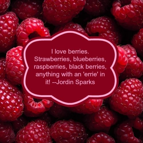 Berries and More Berries