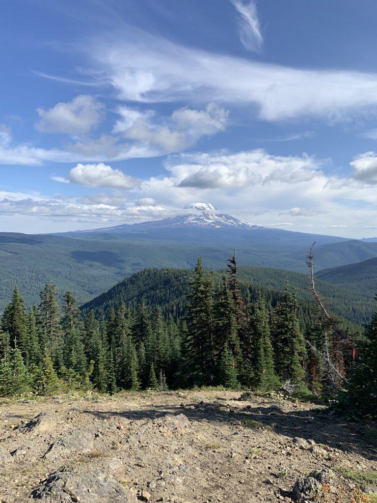 elk peak view